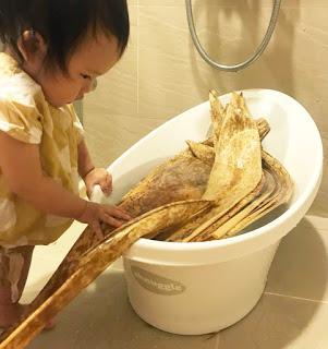 女兒一起加入用月亮澡盆洗粽葉